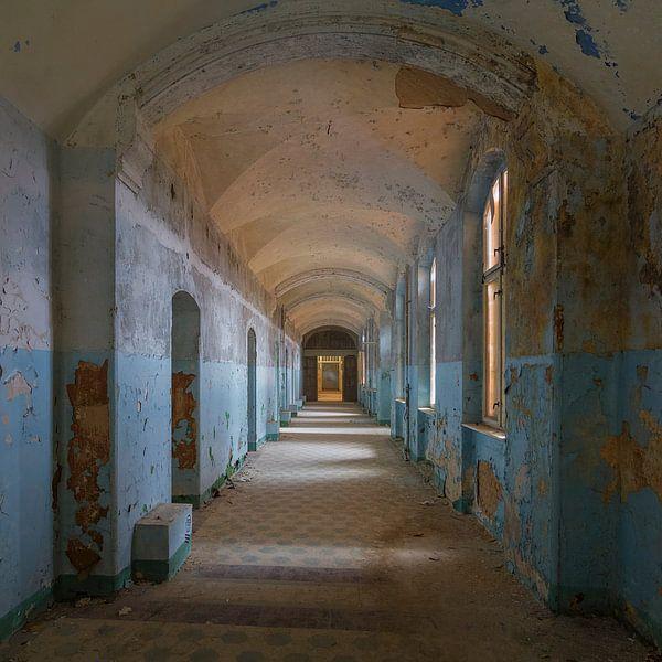 Een van de vervallen hallen van Beelitz van Truus Nijland