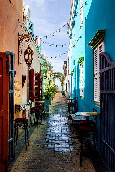 Allee Mundo Bizarro, Curacao von marloes voogsgeerd