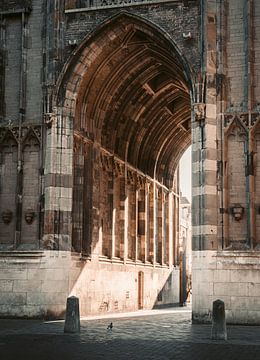Hemels - Warme avondzon onder de Dom in Utrecht van Tim Loos