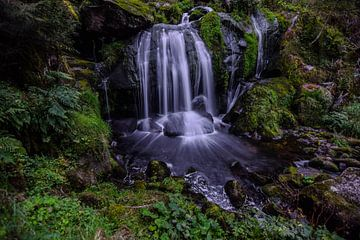 Triberger Wasserfall von Julia Schellig