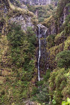 waterval op madeira eiland bij 25 fontes von Compuinfoto .