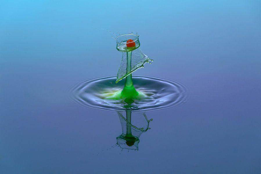 waterdruppel van Lisa Kompier
