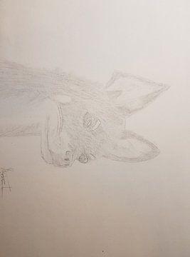 Een chihuahua van Roos Schuijt