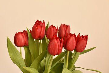 Ein roter Tulpenstrauß von Philipp Klassen