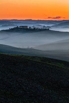 De Toscaanse heuvels in de mist von Roy Poots