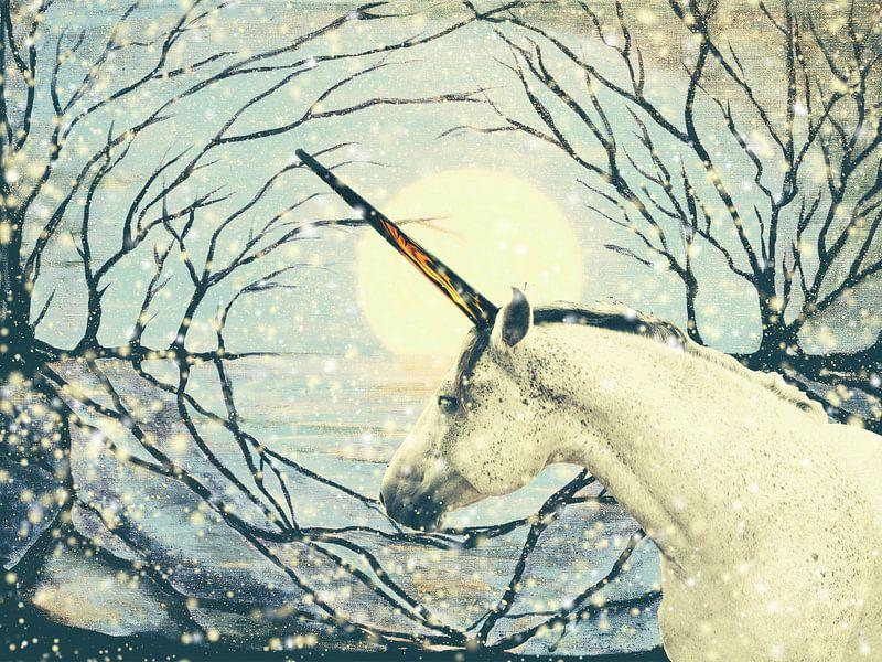De laatste eenhoorn van Christine Nöhmeier