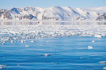 Eisschollen in den Fjorden zwischen den Bergen Spitzbergens von Merijn Loch