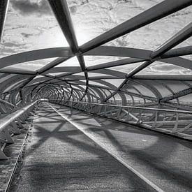 Fietsbrug  De Netkous  in Rotterdam in zwart wit van W J Kok