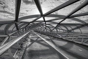 Fahrradbrücke De Netkous in Rotterdam in schwarz-weiß von W J Kok