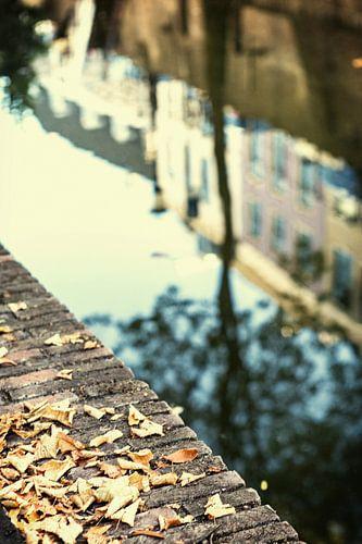 De Nieuwegracht in Utrecht in herfstkleuren (5) van