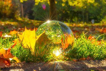 Glaskugel im Herbst van Dagmar Marina