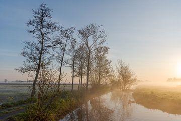 Zonsopkomst in mistig polderlandschap van Beeldbank Alblasserwaard