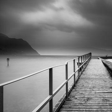 lange Pose auf dem See von celine bg