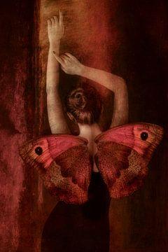 Danse d'un Papillon