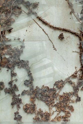Urbex raam 2 van 3 - bruin