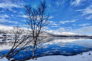 Winterlandschap fjord Noorwegen