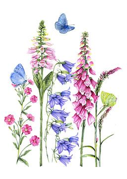 Wilde bloemen natuur van Geertje Burgers