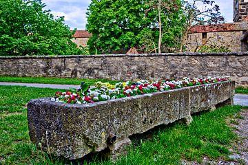 Jardinière Rothenburg ob der Tauber sur Roith Fotografie