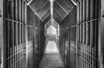 Licht aan het einde van de tunnel van Theo Jansen