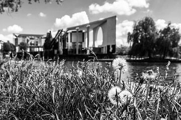 Pusteblumen vor dem Berliner Bundeskanzleramt von Frank Herrmann