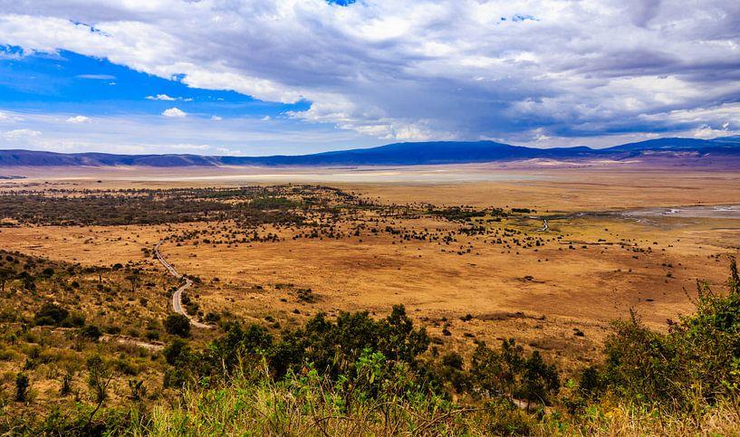 Ngorongoro krater van René Holtslag