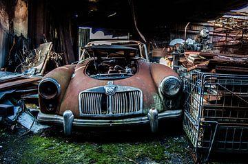 Rusty car van Evelyn Conings