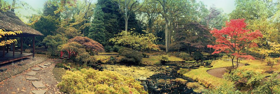 Den Haag  Japanese park