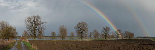 Storm van Lex Schulte