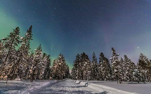 De weg naar het Noorderlicht