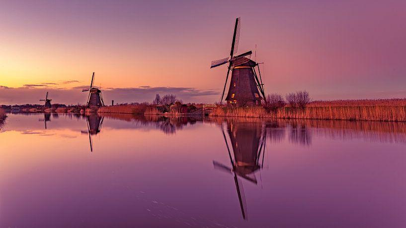 Pink Mills @ Kinderdijk van Michael van der Burg