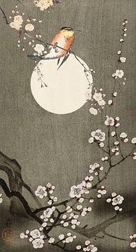 Zen Blooming von Marja van den Hurk