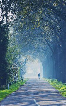 De eenzame fietser von Marian Steenbergen