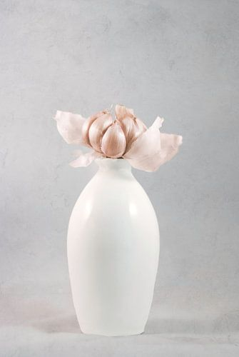Garlic Flower van