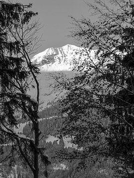 Wintersonne auf die schneebedeckten Berge in den Alpen, Schweiz von Rietje Bulthuis