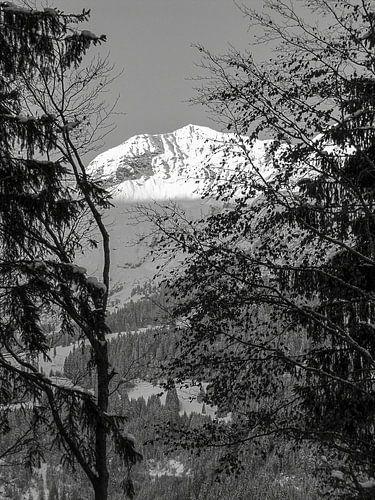 Winterzon op de besneeuwde bergen in de Alpen, Zwitserland