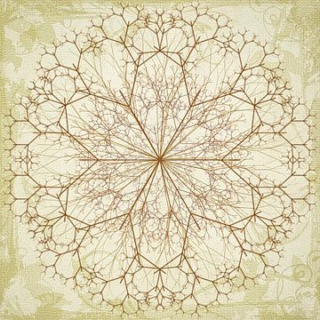 Mandala, getekend van Rietje Bulthuis