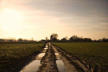 Schlammiger Weg zur Mühle - Dikkele von Freya Clauwaert