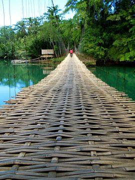 Bamboe brug van Irene Colen