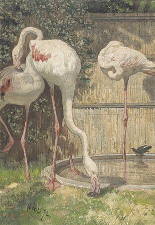 Drie flamingo's bij een bassin, August Allebé van Meesterlijcke Meesters