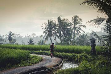 Vissertje in Bali van SomethingEllis