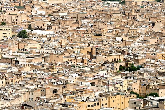 Fez in Marokko van Gert-Jan Siesling