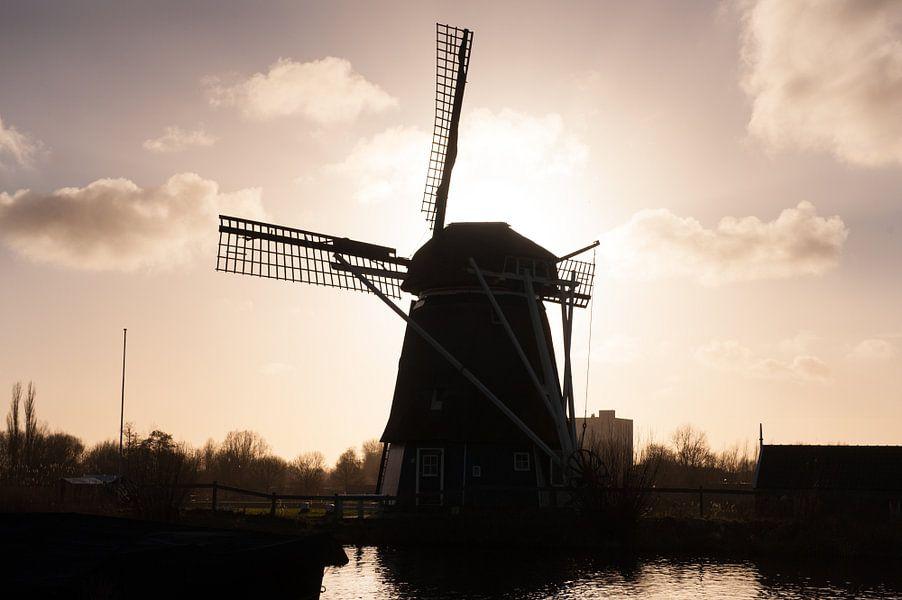 Windmill van Brian Morgan