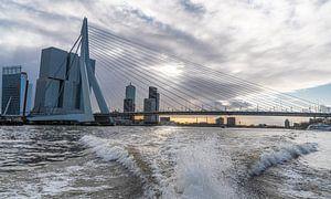 Rotterdam, Erasmusbrug vanaf de watertaxi