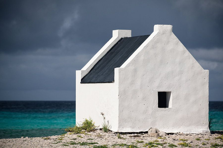 'White Slave', Bonaire