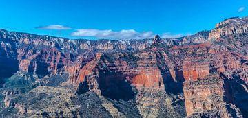 Luchtfoto van de  spectaculaire Grand Canyon, VS van Rietje Bulthuis