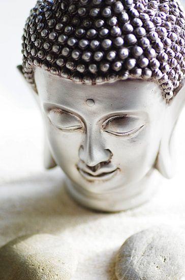 Boeddha hoofd en stenen