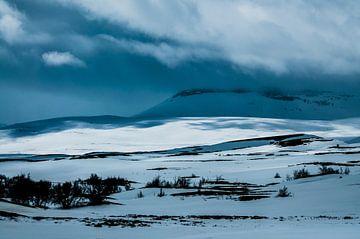 Winterberge. von Niek Belder