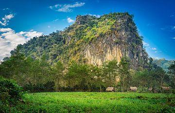 Hütten für den Berghang, Laos von Rietje Bulthuis