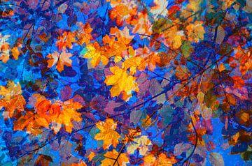 Gouden oktober