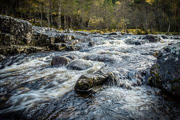 Dog Falls, Glen Affric, Schotland van Michiel Mulder